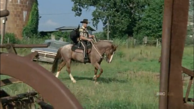 File:Horse and rick6.png
