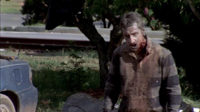 File:The Walking Dead S03E06T 0837.jpg