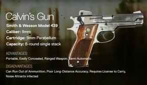 Calvin's Gun