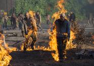 AMC NS Burning Walkers