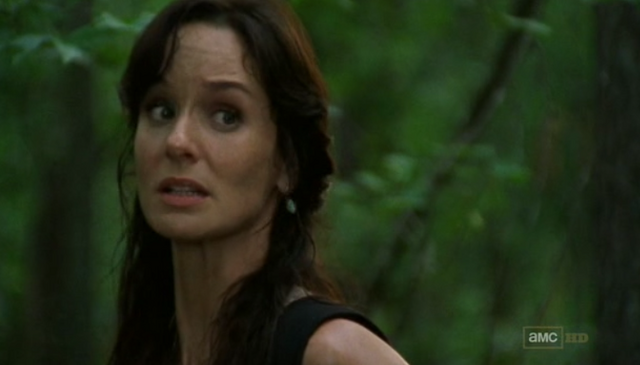 File:Lori Grimes (TV) 12.png