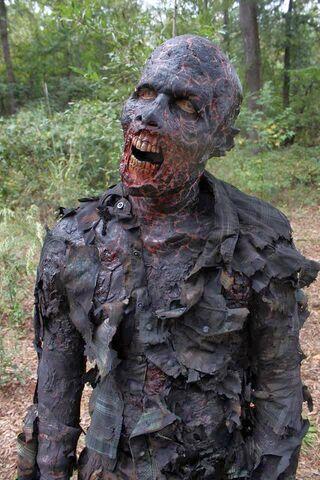 File:The Walking Dead - 4x14 - The Grove.jpg