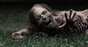 Walking-Dead-decimated zombie