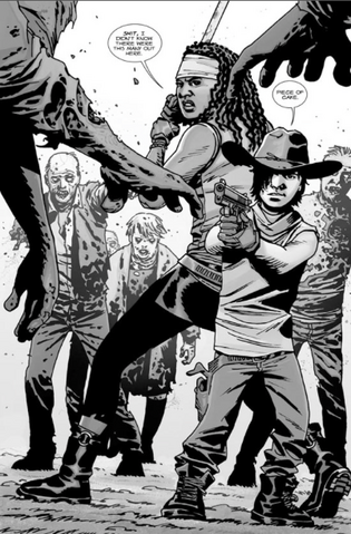File:Carl and Michonne.png