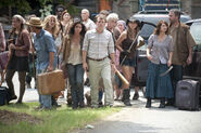 Walking-dead-dallas-roberts-milton-the-suicide-king-season-3-amc