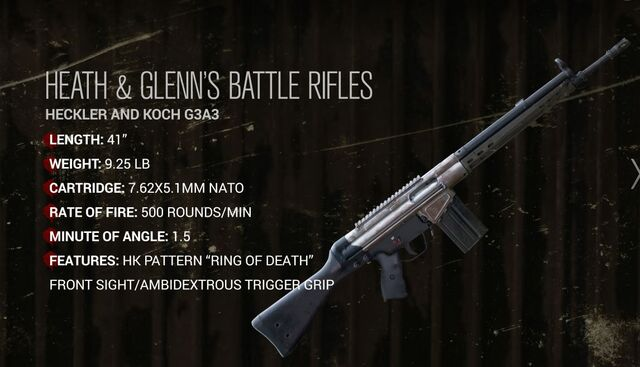 File:Heath & Glenn's Battle Rifle.JPG