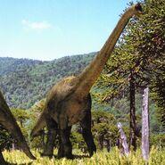 WWDBook Brachiosaurus