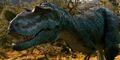 Gorgosaurus face.jpg