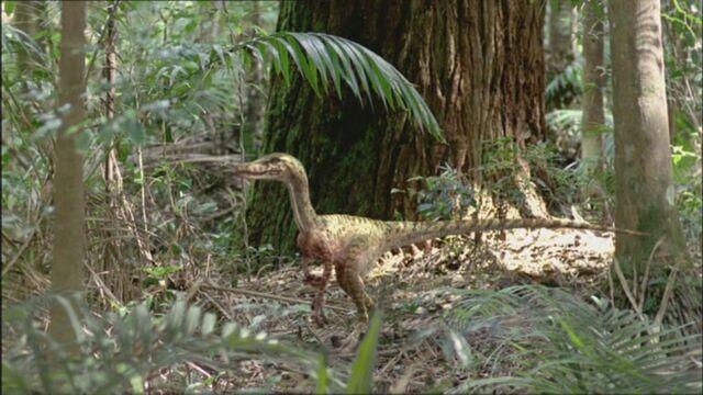 File:TGC VelociraptorWounded.jpg