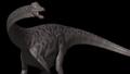 Diplodocus ITW.png