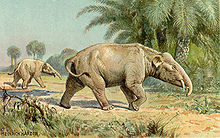 220px-Paleomastodon