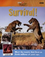 WWB Survival