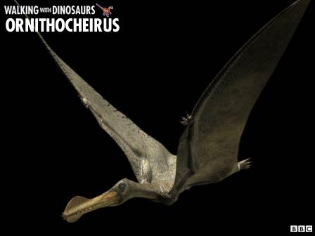 File:Ornitocheirus2.jpg