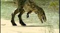 Tarbosaurus CBD Drinking.png