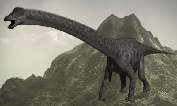 File:Diplodocus newest.png