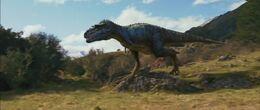 3D Gorgosaurus