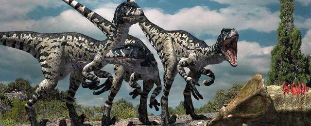File:Dromaeosaurus eating.jpg