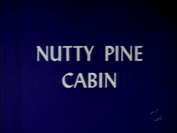 Nutty Pine Cabin (TV Title)