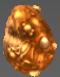 Egg - Ruma