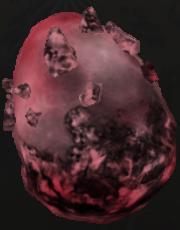 File:Egg - Kastor.PNG