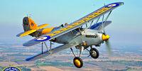 Hawker Nimrod Survivors
