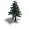 Tree2.v2.png
