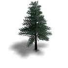 Tree2.v2.png