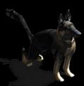 AttackDog-LargePic