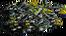 ReinforcedPlatform-Lv2-Destroyed