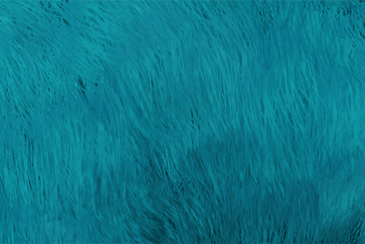 File:KubrowColourVandalBlue.png