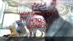 Warframe U14 How to get a Kubrow