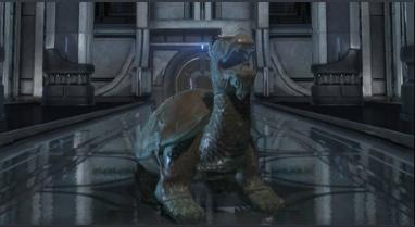 File:CBBronze Turtle Dragon Statue.png
