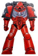 Crimson Castellans Astartes