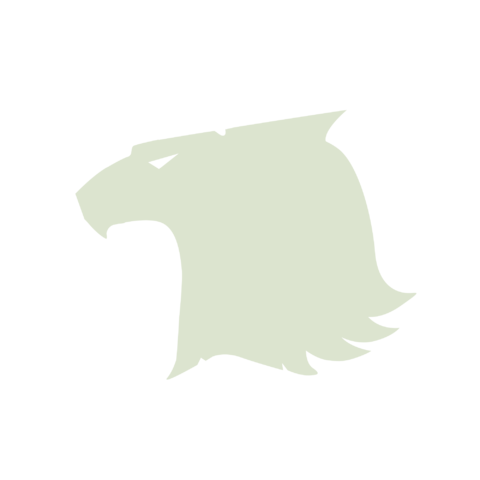 File:Raptors Icon 2000x2000.png