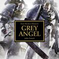 Grey Angel Cover