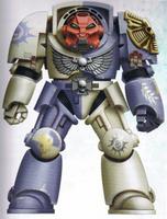 Novamarines Terminator Sergeant