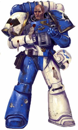 NM Tactical Marine