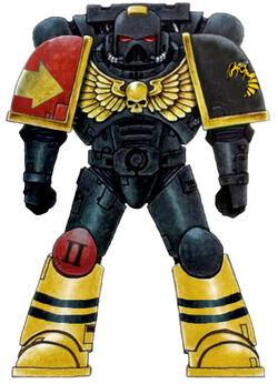 Yellow Jackets Marine