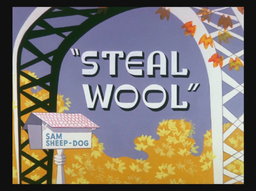 Steal Wool Title Card