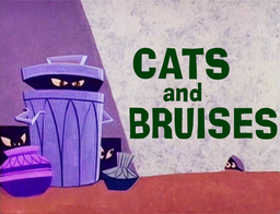 Cats and Bruises Title Card