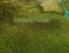 File:Ancient Forest.png