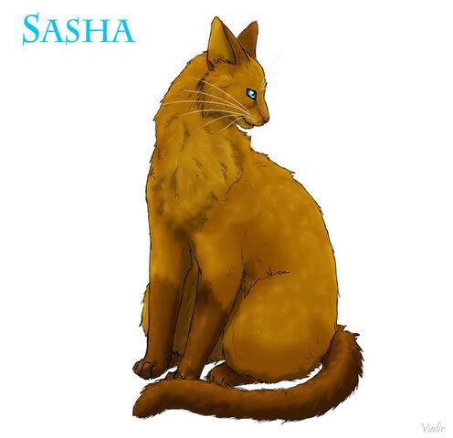 File:Sasha.jpg