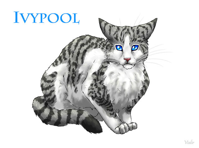 File:Ivypool by vialir-d6hz8e6.jpg
