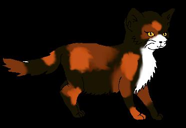 Warrior Cats Rpg Namen