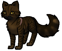 Rabenpfote Warrior Cats
