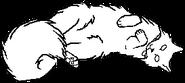 Kittypet.lh