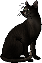 File:Snakeclaw.warrior.png