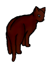 File:Lilystorm.png