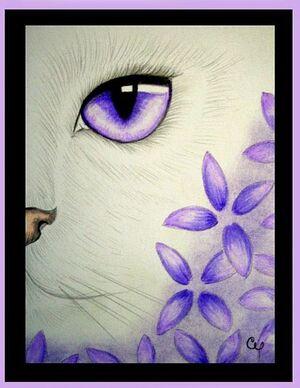 VioletCatDrawing