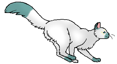 File:Snowfur.Star.png